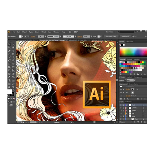 Adobe CS6 Master Collection: Photoshop, Illustrator, InDesign, Acrobat, Fireworks, Premiere, After Effects, Audition